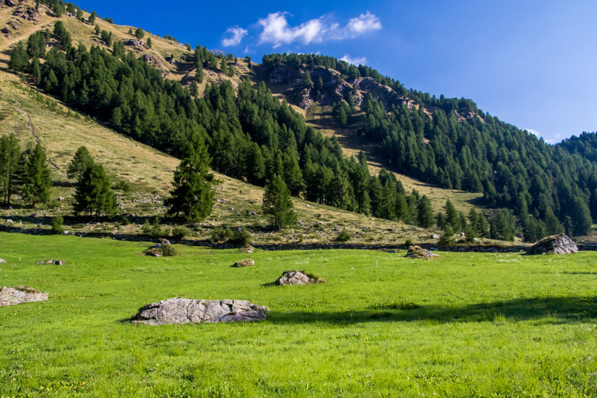 Das Tal ist geprägt von engen Hochweiden, die immer wieder von Felsbrocken vergangener Bergstürze durchsetzt sind