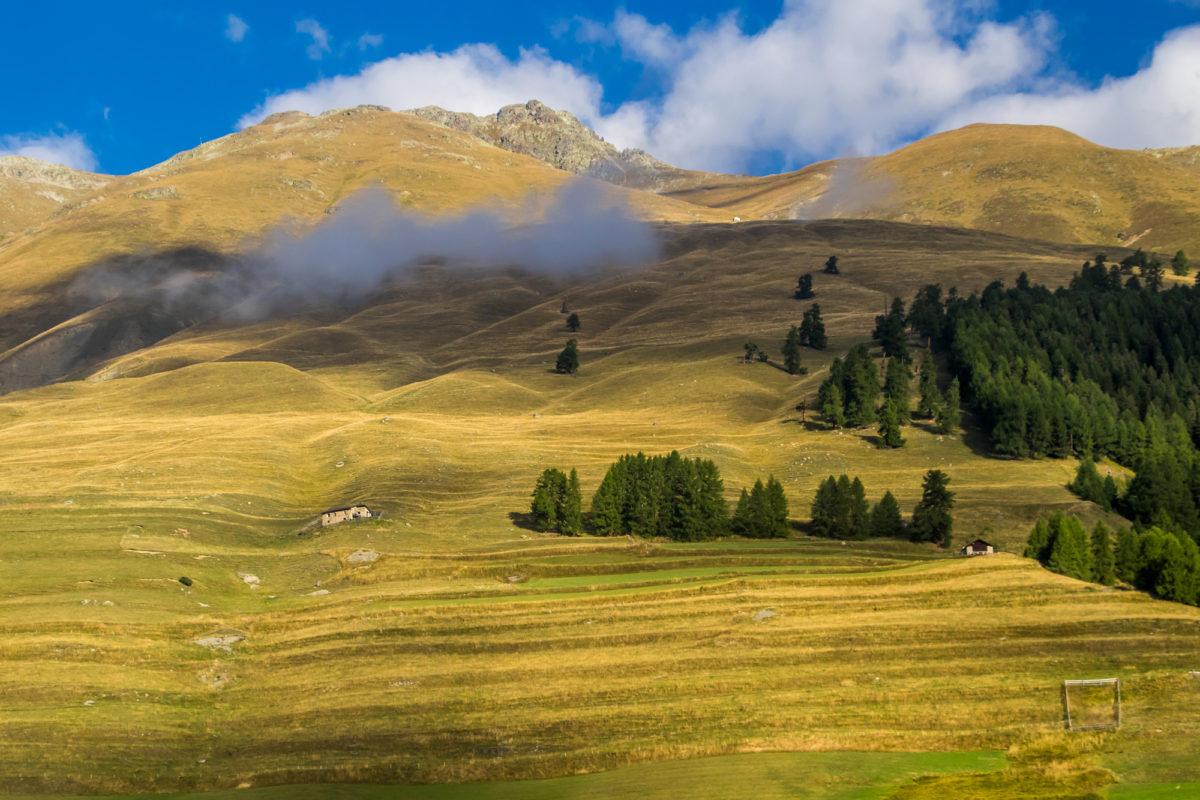 Mit der zunehmenden Höhe werden die Hänge karger. Lag Zernez noch auf 1400 Metern über Meer, sind es bei der Endstation Chamues-ch bereits stattliche 1700.