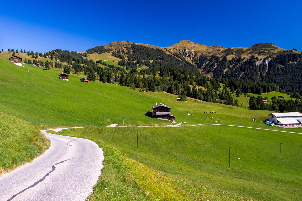 Die Strasse zur Alpsiedlung Mottis, 1'470 m.ü.M.