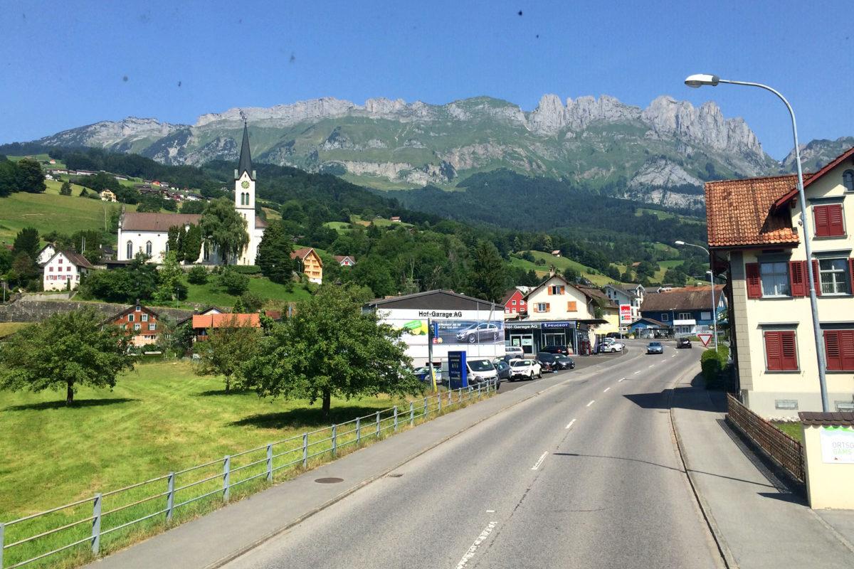 Gams, im Hintergrund die Ausläufer des Alpsteins