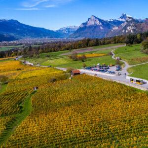 Idyllische Fahrt durch die Weinbau-Gebiete des Rheintals