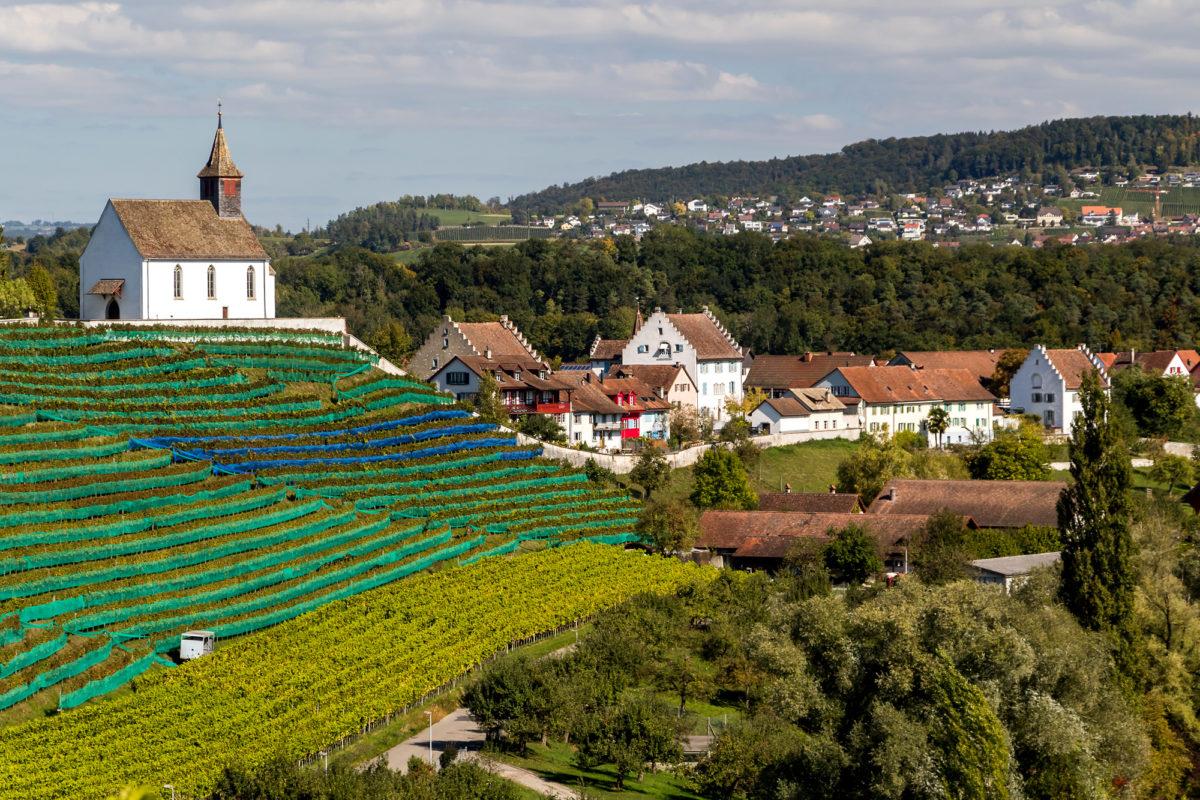 Blick auf Rheinau mit seinen paar Patrizierhäusern und der Bergkapelle St. Nikolaus (1579)