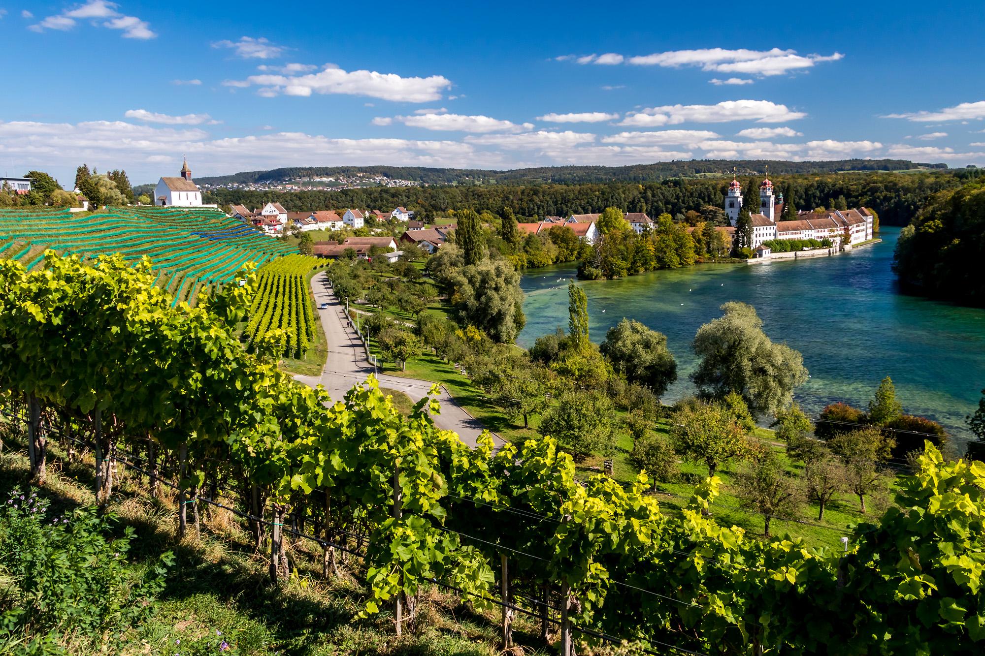 Das wunderschön in einer Rheinschlaufe gelegene Klosterort Rheinau (ZH)