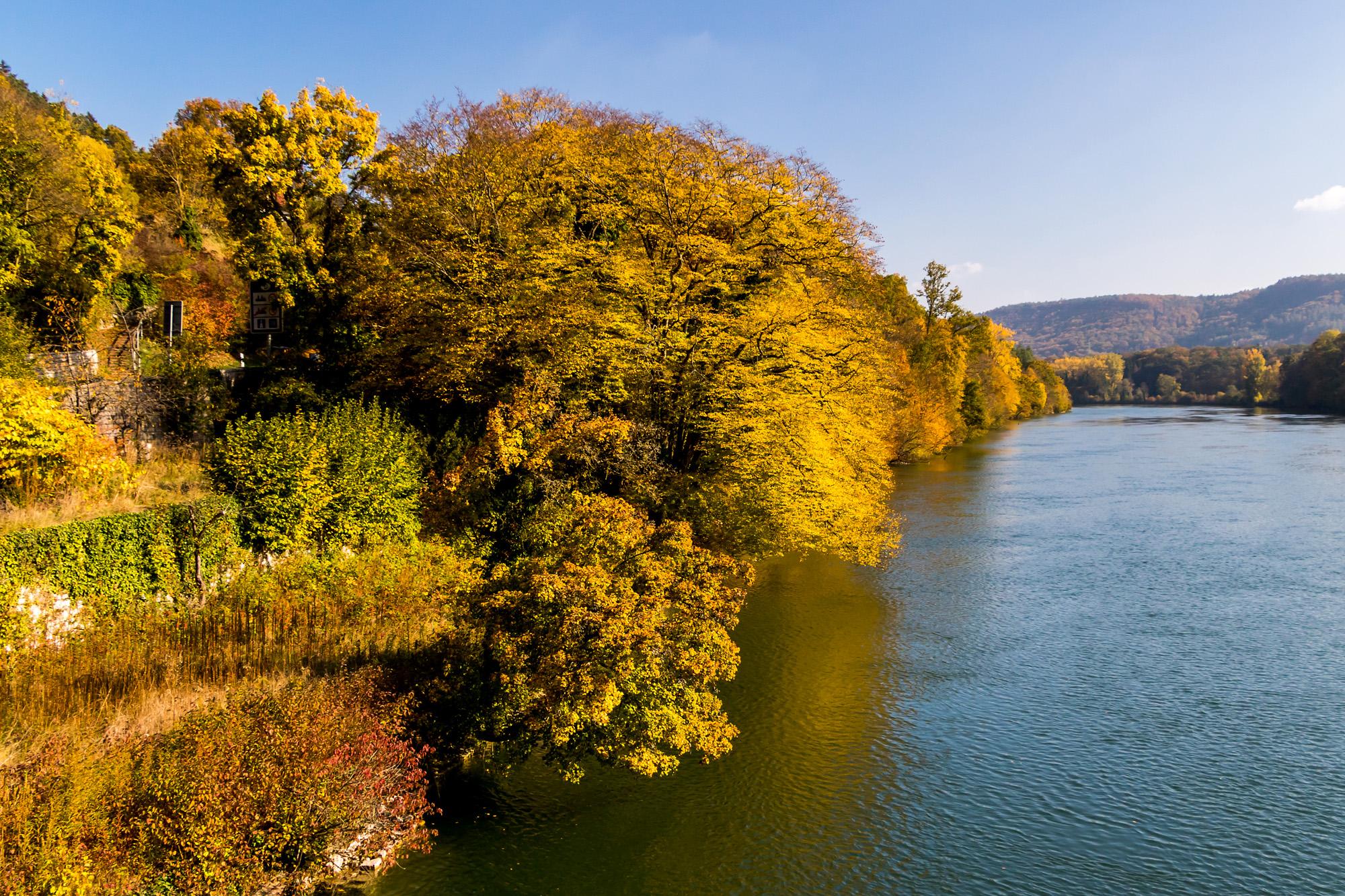 Zum ultimativen Abschied zeigt sich der Rhein von seiner bunten Seite!