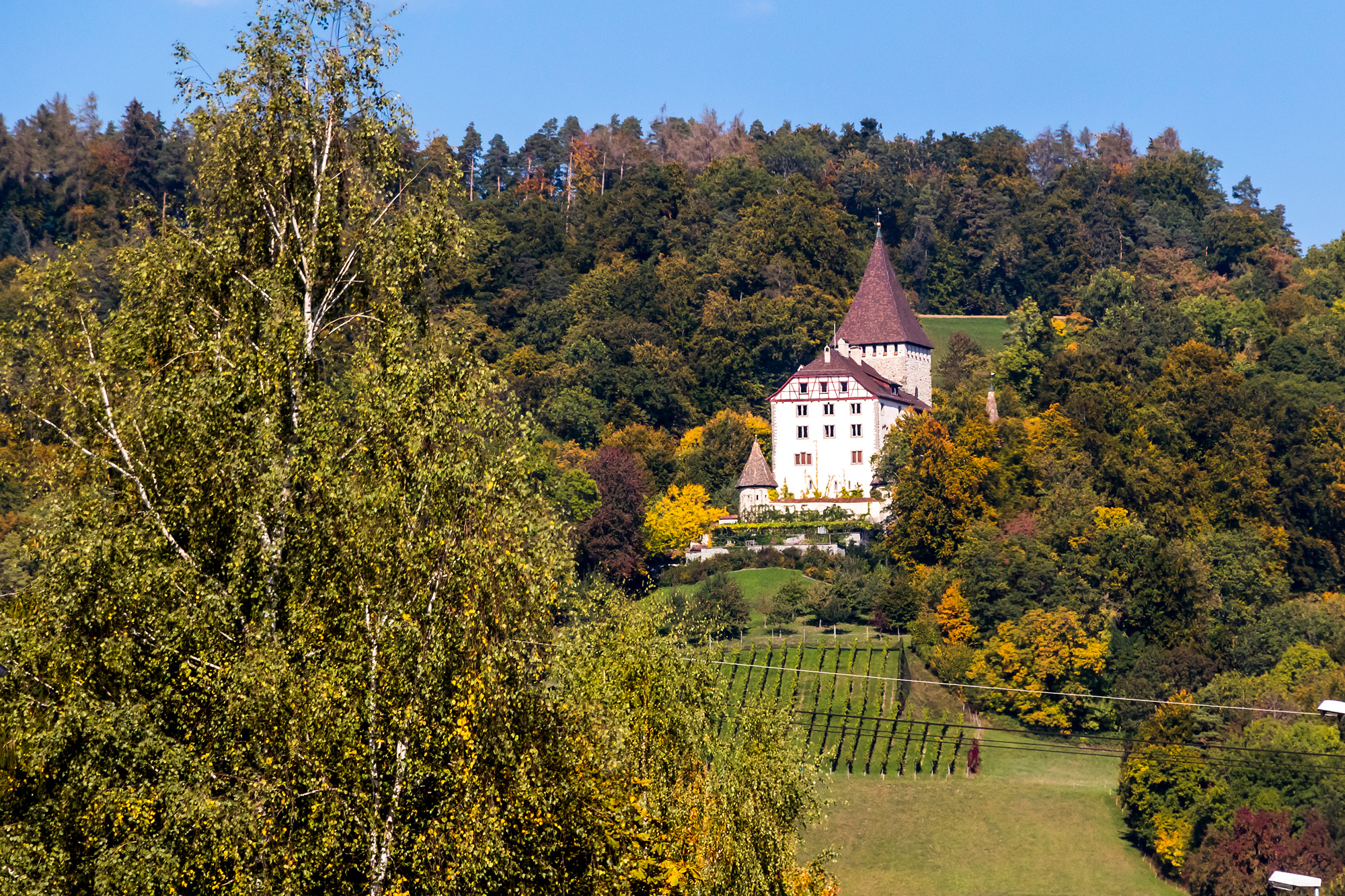 Schloss Weinfelden