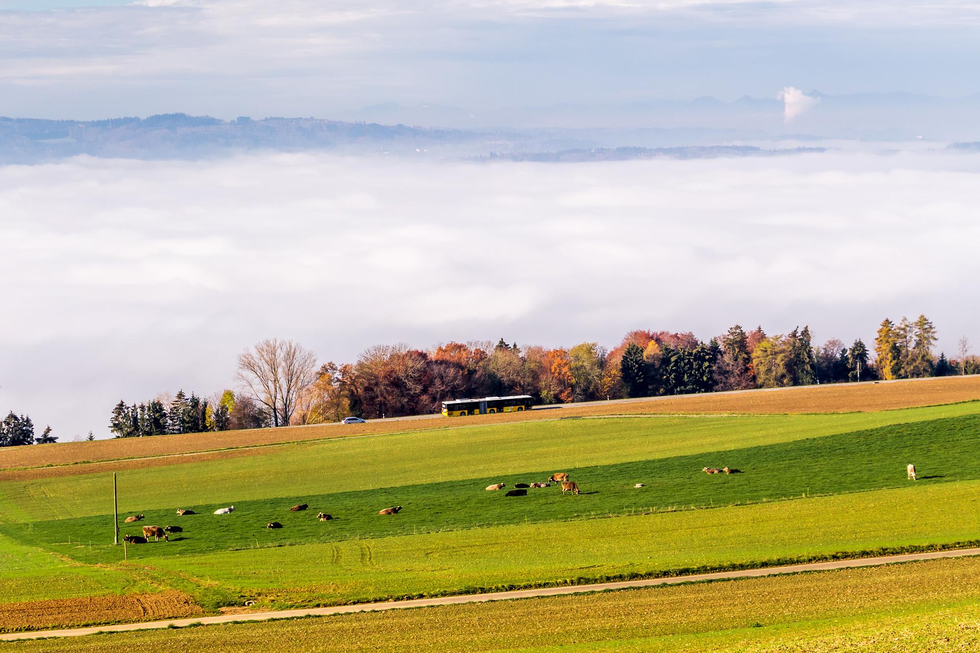 Panoramafahrt über dem eingenebelten Reusstal (AG)