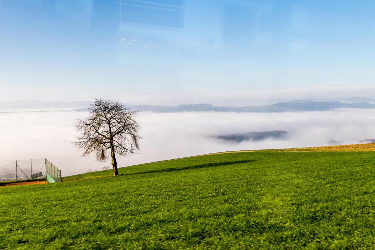 Während bergabwärts der Nebel die Sicht trübt...