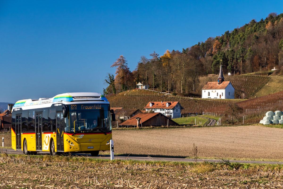 Ausgangs Oberstammheim (ZH). In den Rebbergen thront die Galluskapelle, deren älteste Bauteile auf das 12. Jahrhundert zurückgehen