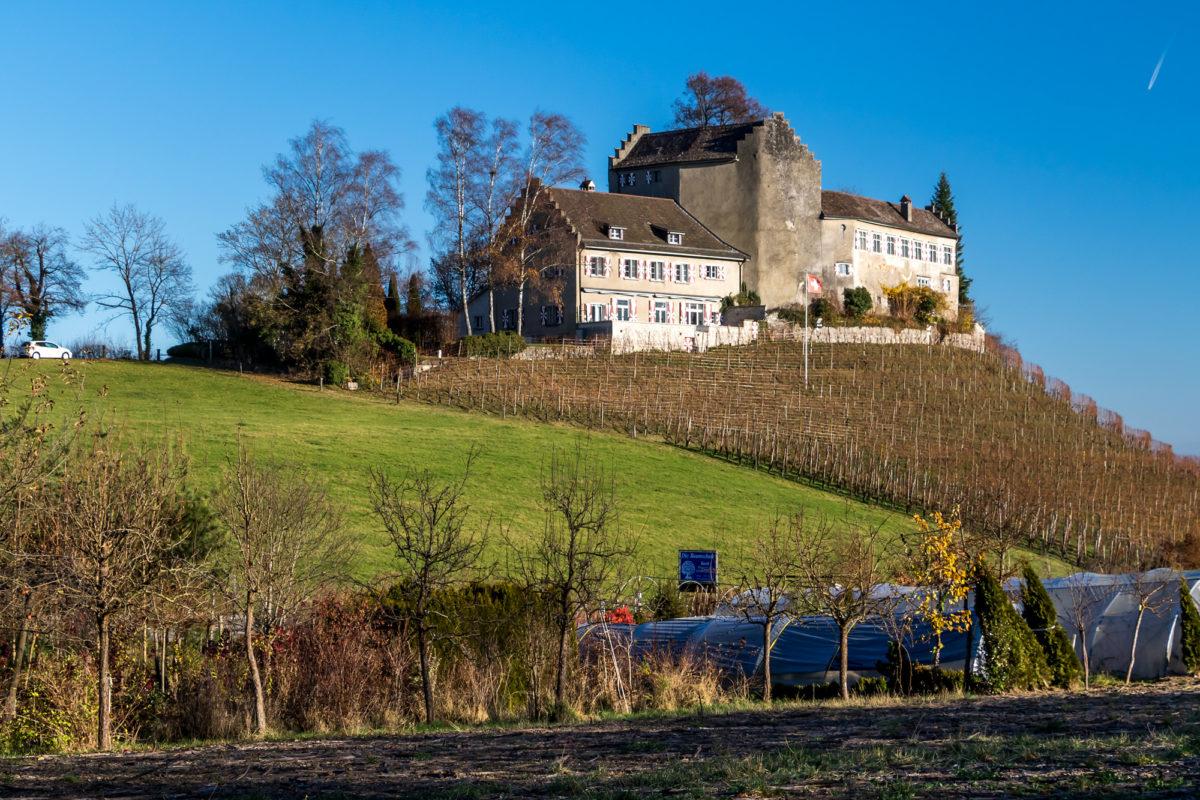 Schloss Schwandegg bei Waltalingen, aus dem 13. Jahrhundert